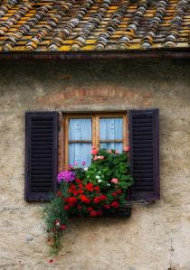 window-box-italy-bob-coates
